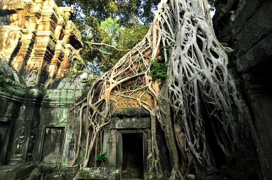 Angkor Vat, viaje Camboya, cocteles