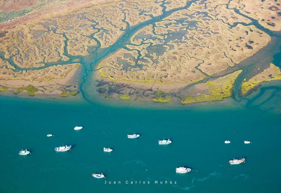 marismas Huelva, Guadalquivir, viaje playas huelva