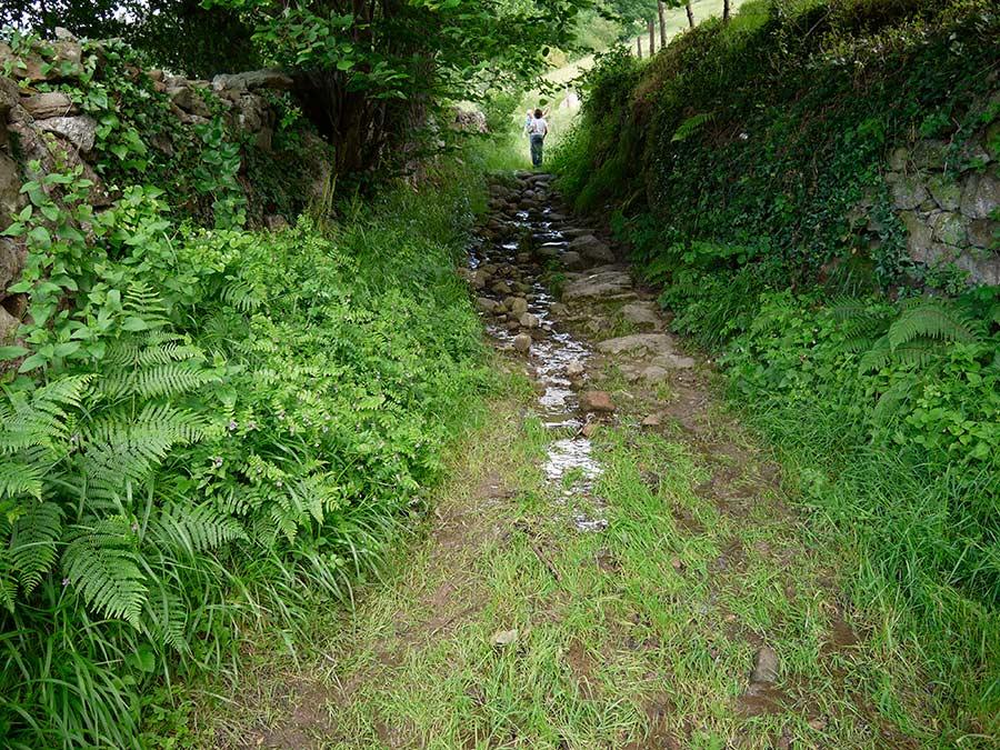 ruta calzada romana, rutas cantabria
