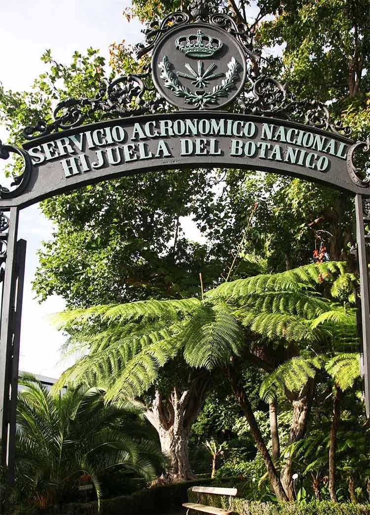 hijuela botanico, la orotava