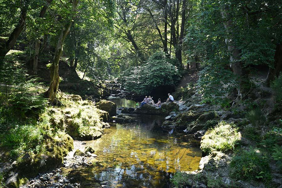 Parque Forestal de Tollymore irlanda del norte
