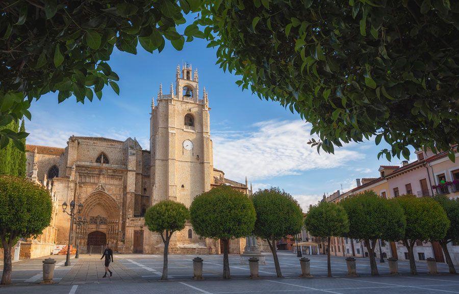catedral de Palencia referente arquitectura palentina