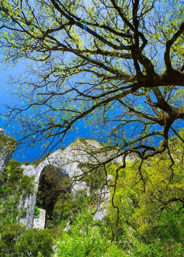 cueva de la leze en el monte Altzania