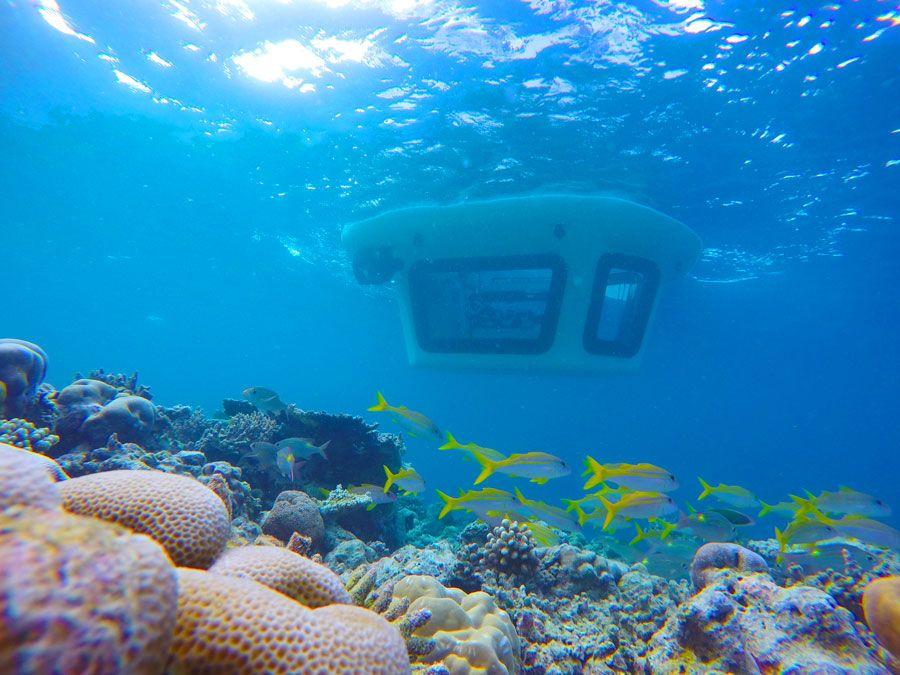 barcos con suelos de cristal en Maldivas