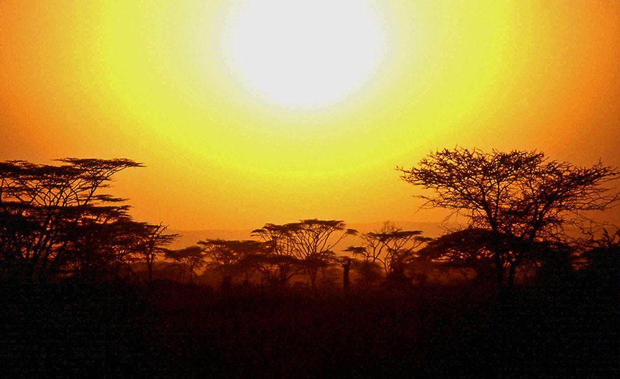 atardecer en kenia memorias de africa
