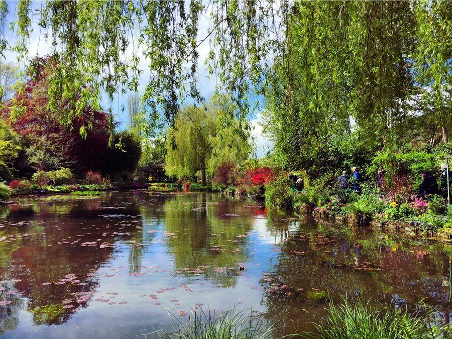 jardin del agua de monet en giverny