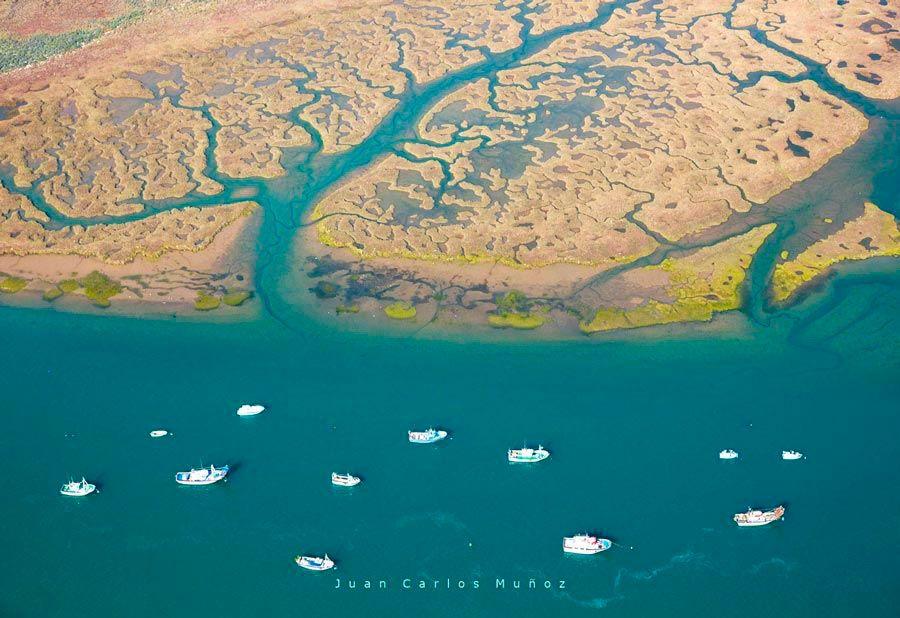 Vista aérea de las marismas del río Odiel