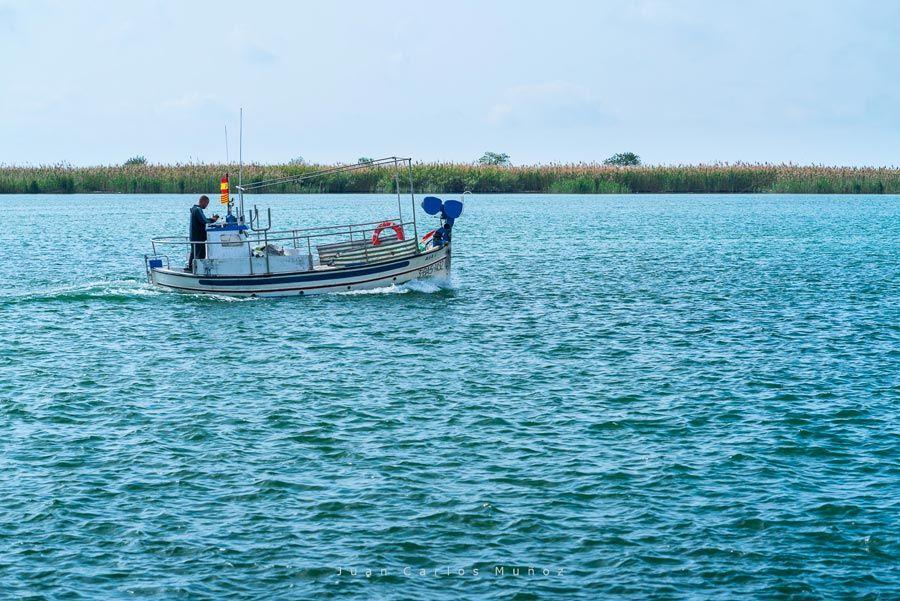 en barco por el delta del ebro