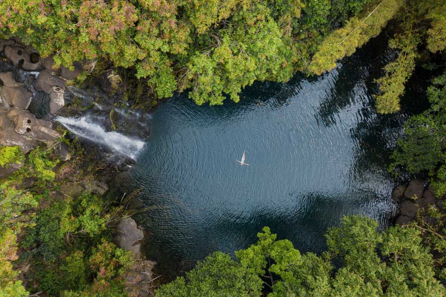 Naturaleza en isla Mauricio