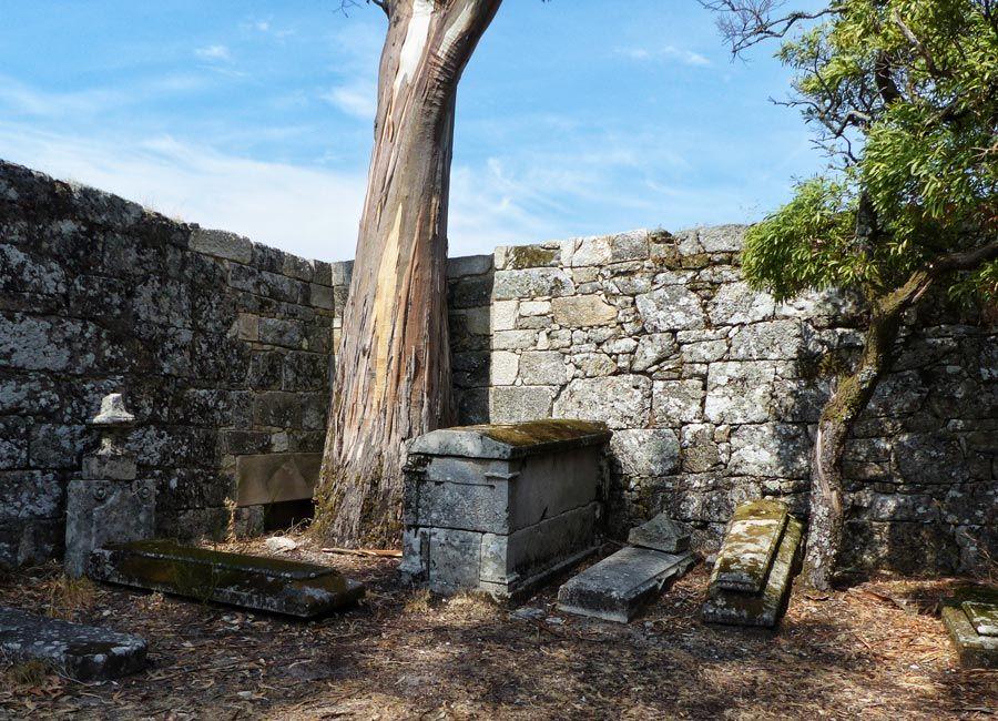 cementerio isla de las pandemias san simon