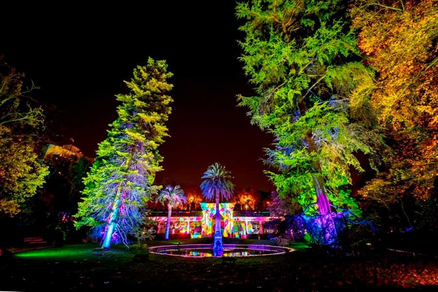 Navidad en el Jardín botánico de Madrid