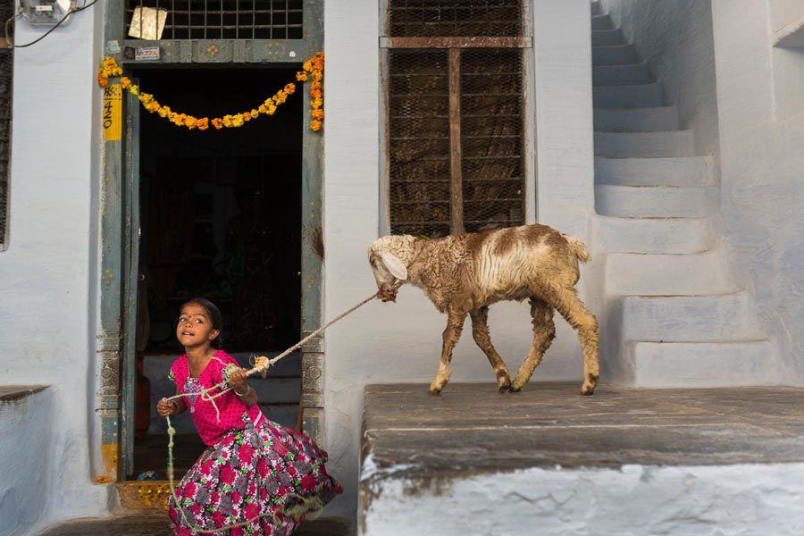 nina en tierra de sueños expo de india