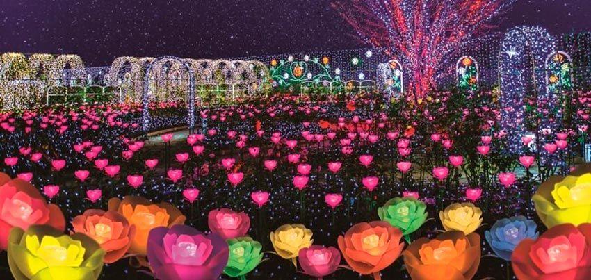 Parque Floral Ashikaga Flower Fantasy