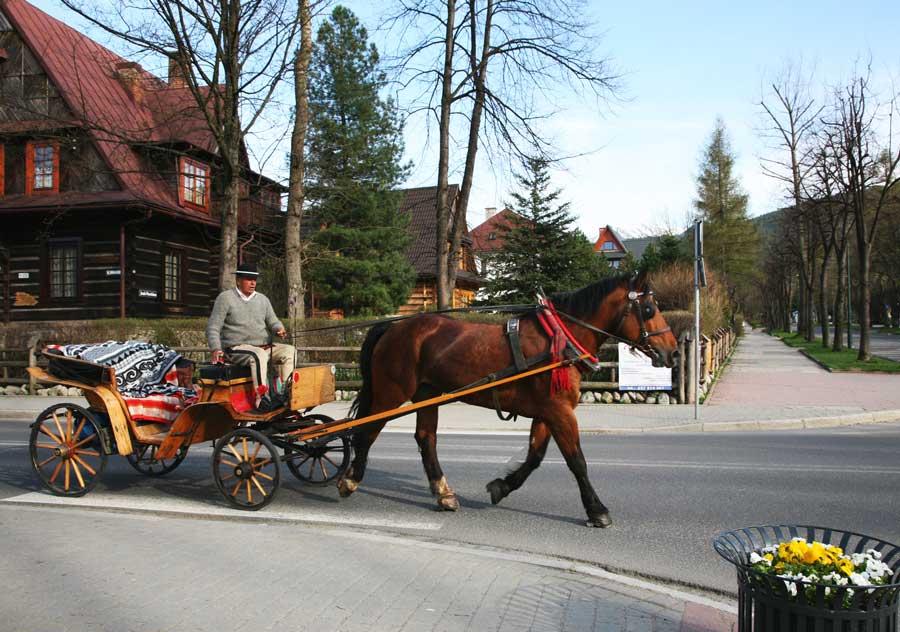 visitas en Zakopane