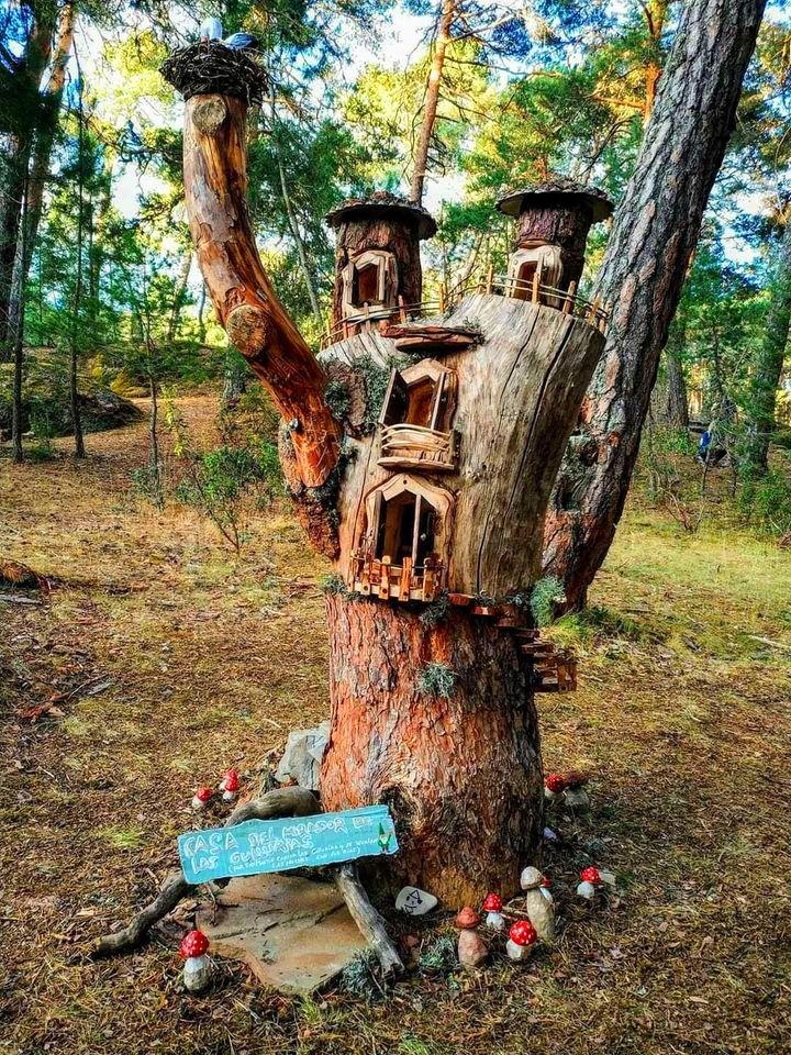 bosque magico en soria