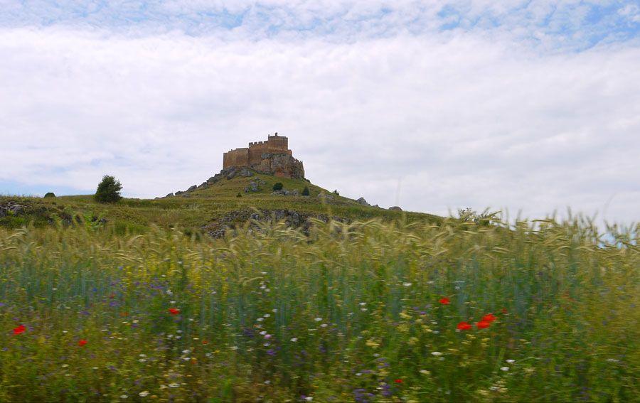 fortaleza califal del gormaz en soria con ninos