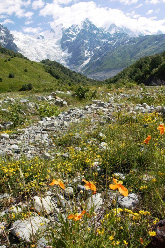 camino del trekking a Ushguli