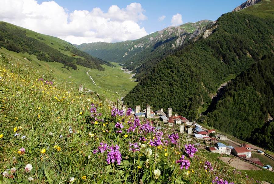 valle con flores georgia