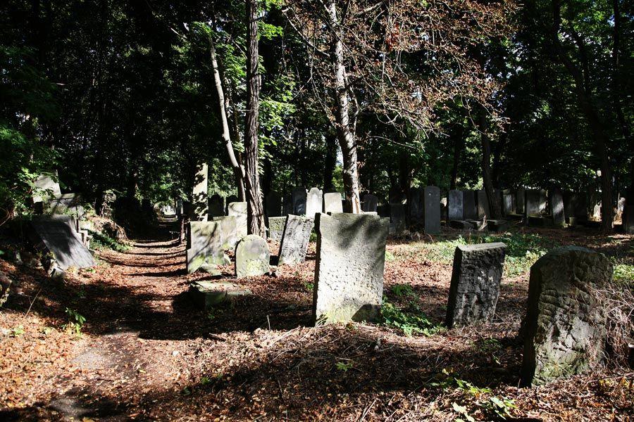 Cementerio Judio de Zydowski