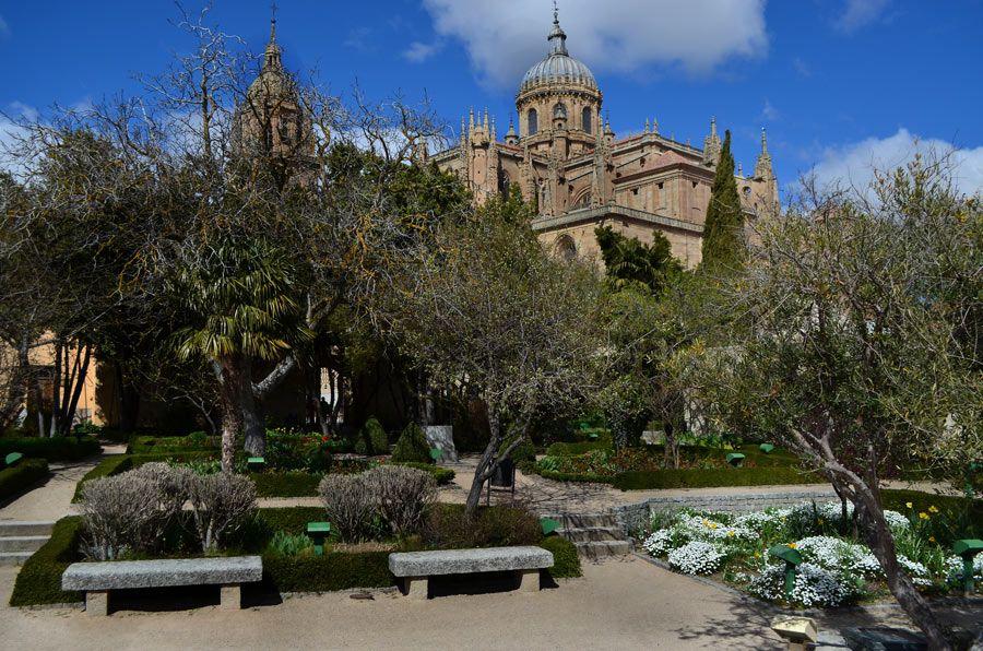 Huerto de Calixto y Melibea  planes originales en Salamanca