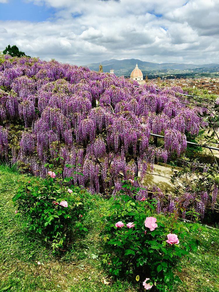 bardini jardines de florencia