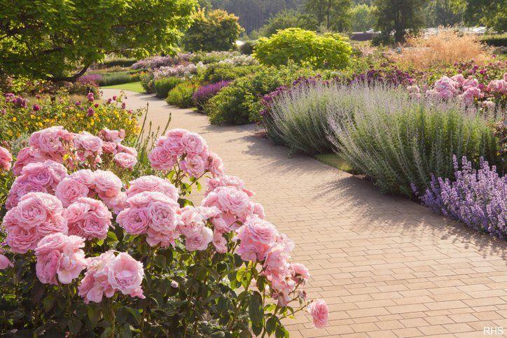 RHS Wisley mejores jardines de gran bretana