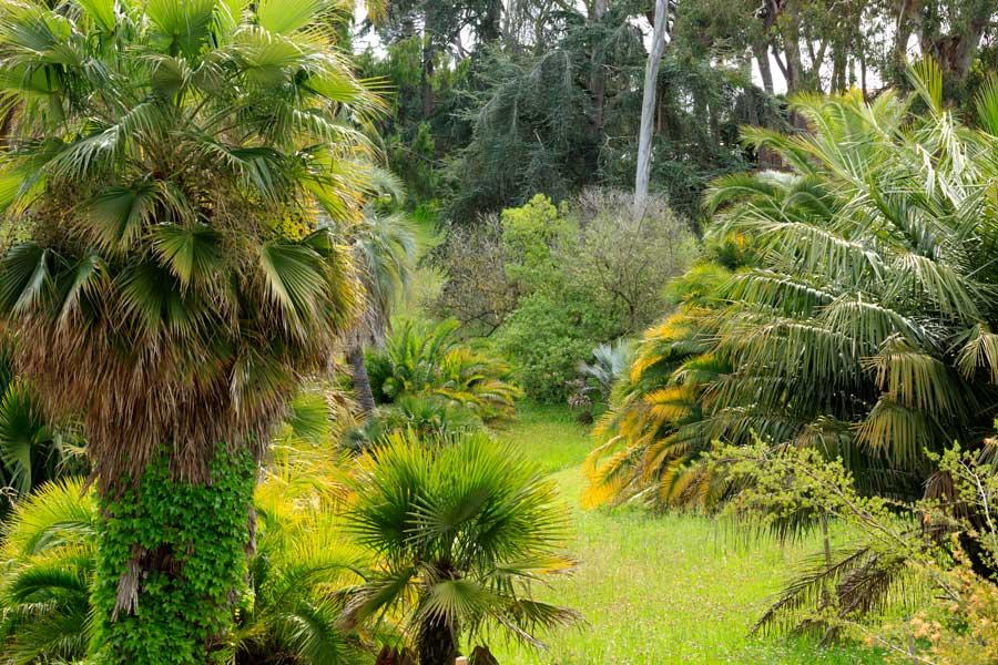 jardín en Cap de Antibes