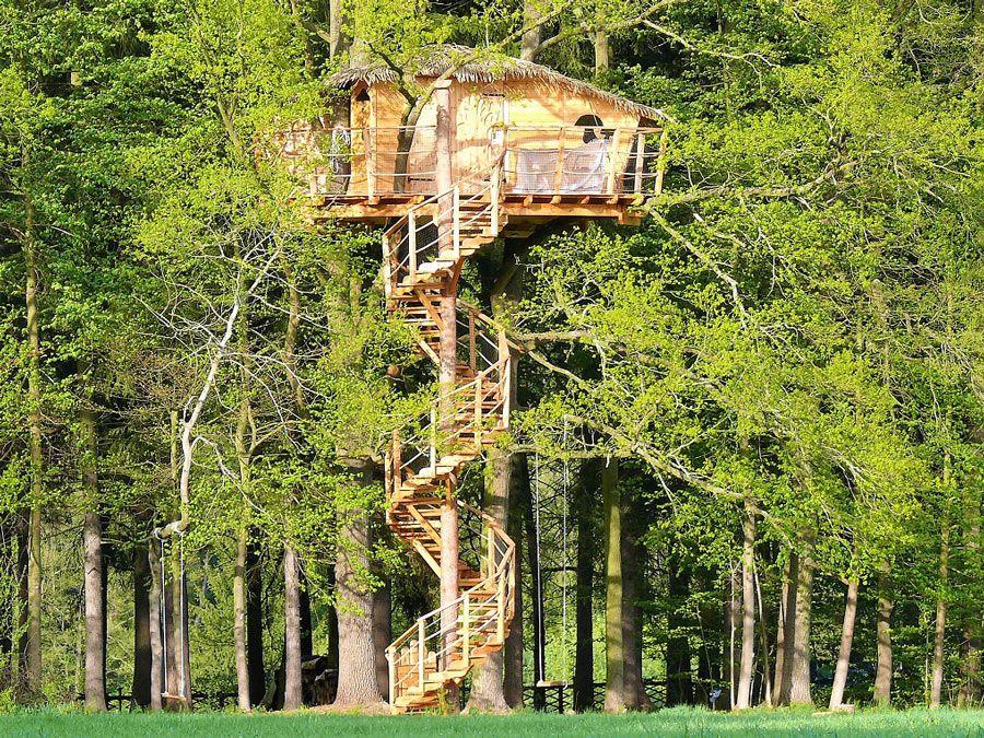 Green Valley Resort cabana arbol chequia