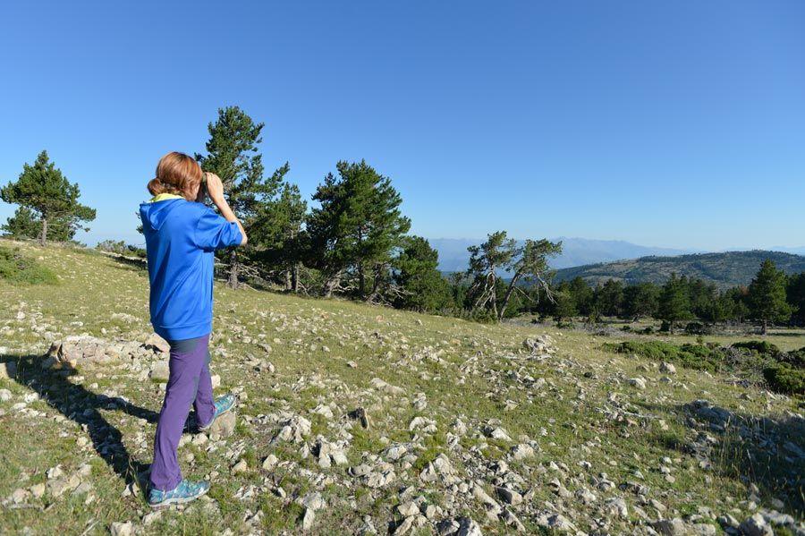 Reserva Nacional de Caza de Boumort lleida