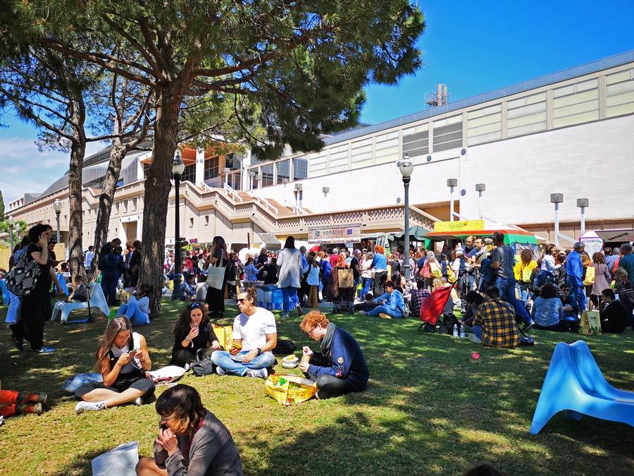 picnic en biocultura