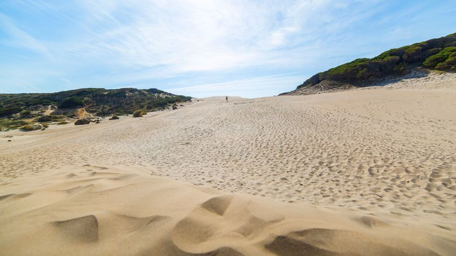 Inicio de la duna de la playa de Bolonia.