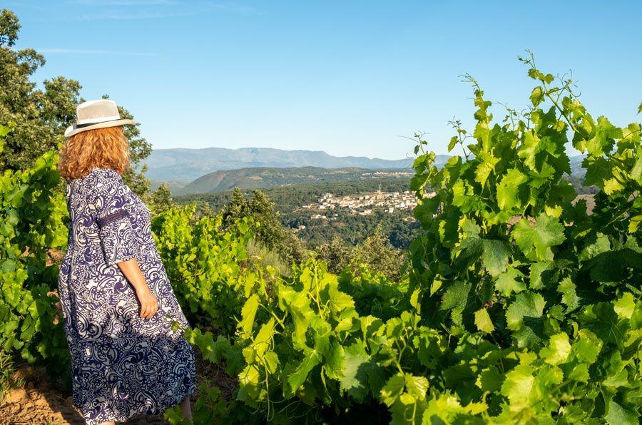 Ruta del Vino de la Sierra de Francia