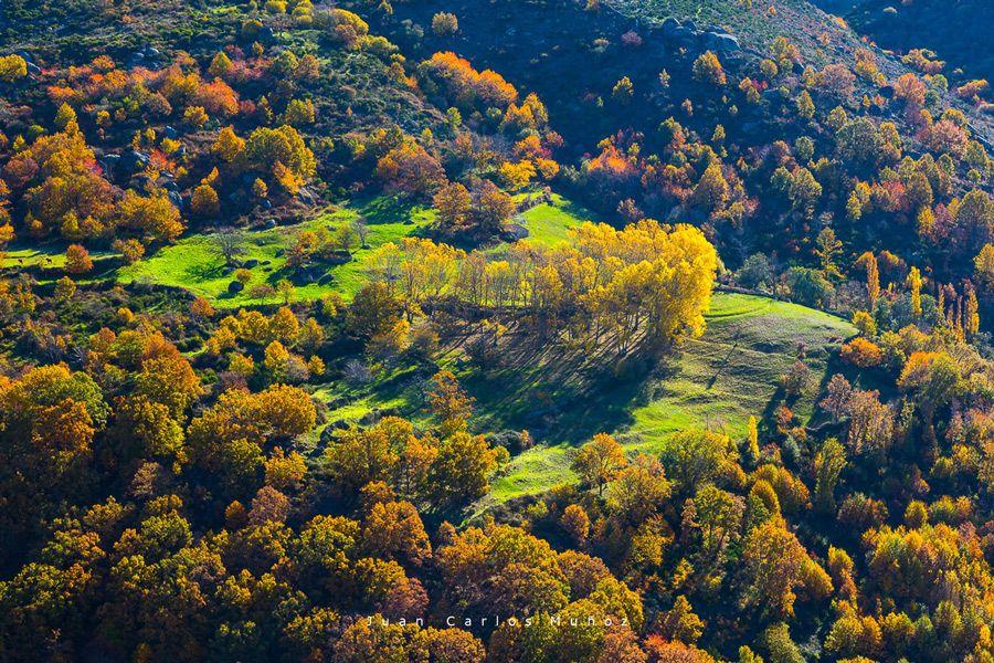 ruta bosques hervas caceres